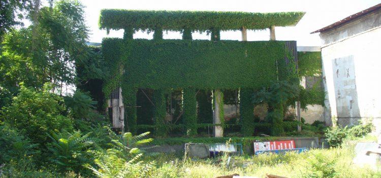Grădina de vară Jean Negulescu